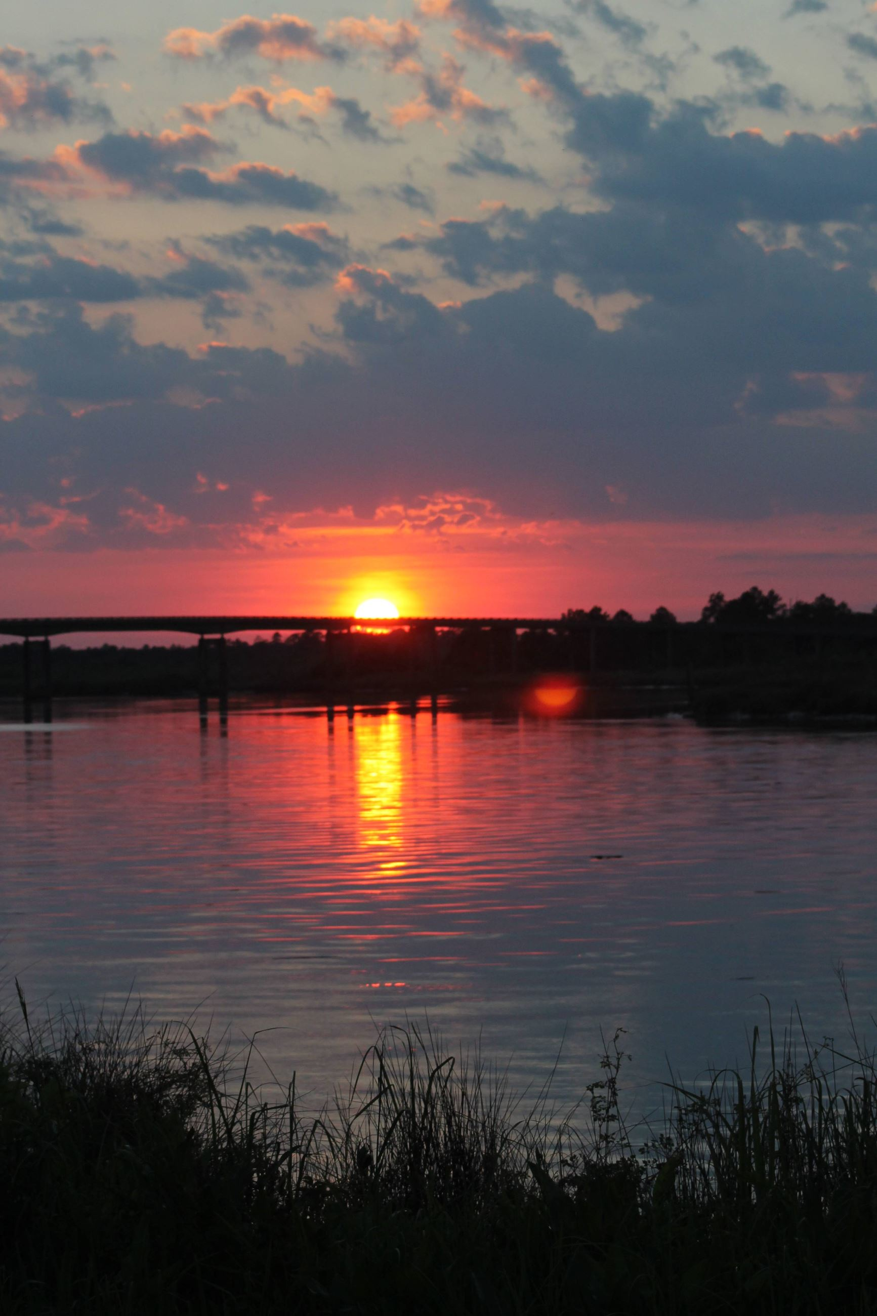 Pricilla Krupp Bank of Satilla Riverat Sunset