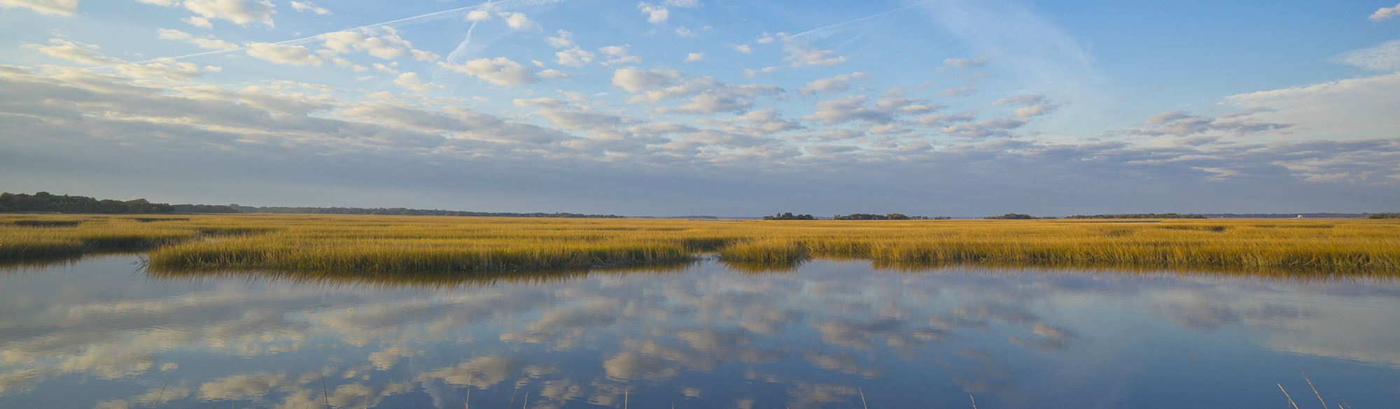 A view of watery marshes with the sky reflecting in the water on Cumberland Island