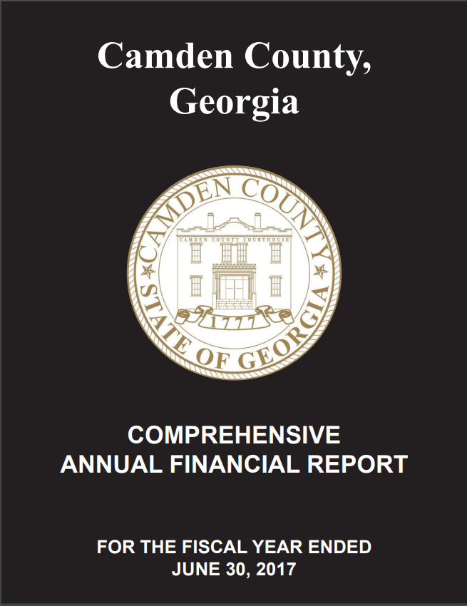 FY 2017 Comprehensive Annual Finance Report